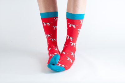 Bamboo Socks Red Dogs