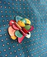 Brooch Nutshell Multicolour
